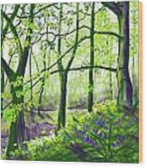Marsh Marigolds And Bluebells Wood Print