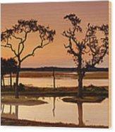 Marsh Morning Wood Print