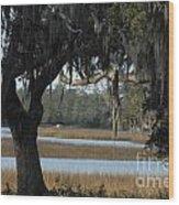 Marsh Oak Wood Print