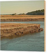 Marsh Of Pine Point Wood Print