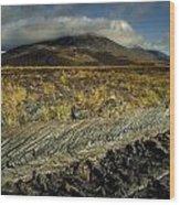 Marsh On The Landscape, Connemara Wood Print