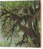 Marvelous Moss Wood Print