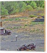 M.a.s.h Property 2 Wood Print