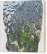 Matalic Angle Wings  Art Wood Print