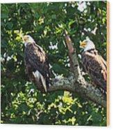 Mating Pair Wood Print