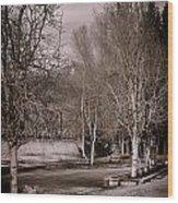 Matsqui River Park Wood Print