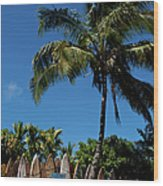 Maui Surfboard Fence - Oldest Section Wood Print