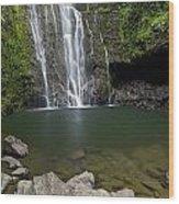 Mauis Wailua Falls Wood Print