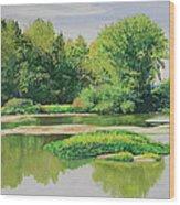 Maumee Reflection Wood Print