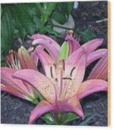 May Birth Flower Wood Print
