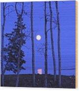 May Moon Through Birches Wood Print