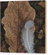 May To October Wood Print