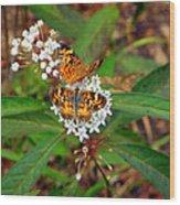 May Wildflower Visitors  Wood Print