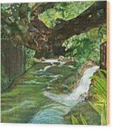Maya Ubud Tree Bali Indonesia Wood Print