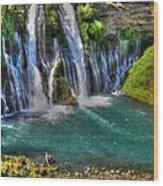 Mcarthur-burney Falls - Pool Wood Print