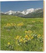 Meadow Landscape Wood Print