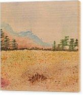 Meadow Wildflowers - Watercolor Wood Print
