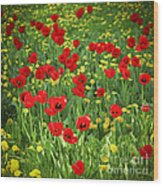 Meadow With Tulips Wood Print