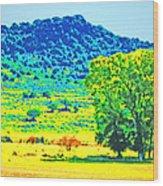 Meadows And The Cedar Breaks Wood Print