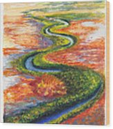Meandering River In Northern Australian Channel Country Wood Print