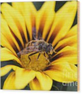 Meant To Bee Wood Print