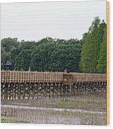 Medard Park Boardwalk Fishing Pier Wood Print