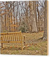 Meditation At Valley Forge Wood Print
