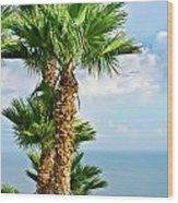 Mediterranean Landscape Wood Print