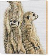 Meerkats Wood Print