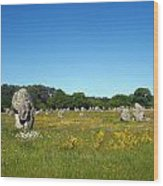 Megaliths - The Sequel Wood Print