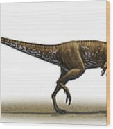 Megapnosaurus Kayentakatae Wood Print