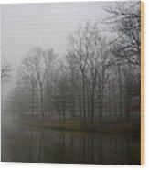 Melancholy Foggy Evening Wood Print