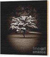 Memoir 1 Wood Print