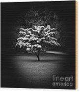 Memoir 2 Wood Print