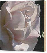 Memorial Rose Wood Print