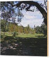 Memorial Trail Color Wood Print