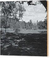 Memorial Trail Wood Print