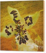 Memories Of An  Orchid Wood Print