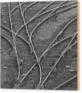 Merging Tracks Wood Print by Jeff Trotter
