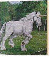 Merlin's Unicorn Wood Print