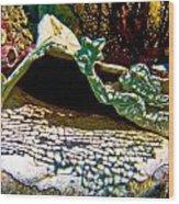 Mermaid And Her Coral Wood Print