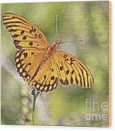 Merritt Butterfly Wood Print