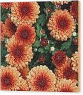 Merry Marigolds Wood Print