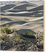 Mesquite Sand Dunes Wood Print
