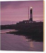 Mew Island, Belfast Lough, County Wood Print