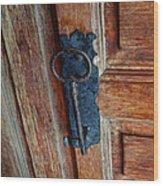 Mexican Door Decor 3  Wood Print