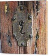 Mexican Door Decor 7   Wood Print