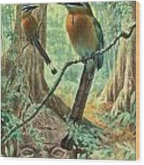 Mexican Motmots Are Perched On Jungle Wood Print by Walter A. Weber