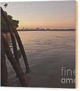 Miami And Mangroves Wood Print