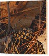 Michigan Golden Sunset Pine Cone Wood Print